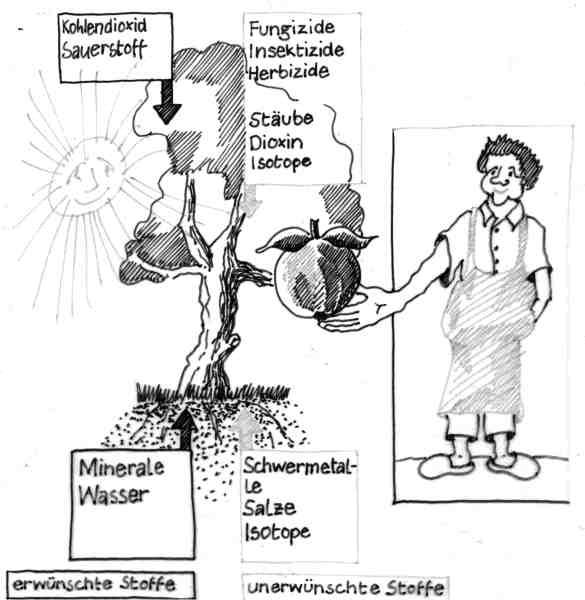 salze chemie übersicht
